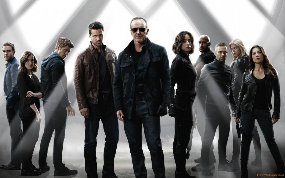 Agents of S.H.I.E.L.D., a group of people
